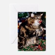 Merry Maine Coon Christmas Greeting Cards (pk Of 2