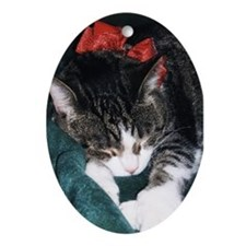 Christmas Dreams Proceeds to Felines Cat Shelter O