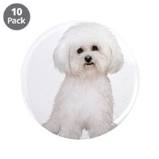 "Bichon Frise (#2) 3.5"" Button (10 pack)"