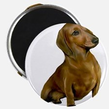 "Brown / Red Dachshund 2.25"" Magnet (100 pack)"