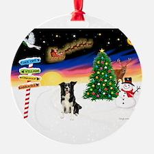 XmasSigns/ Border Collie #4 Ornament