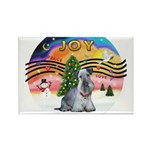 XMusic2-Cesky Terrier (slate) Rectangle Magnet (10