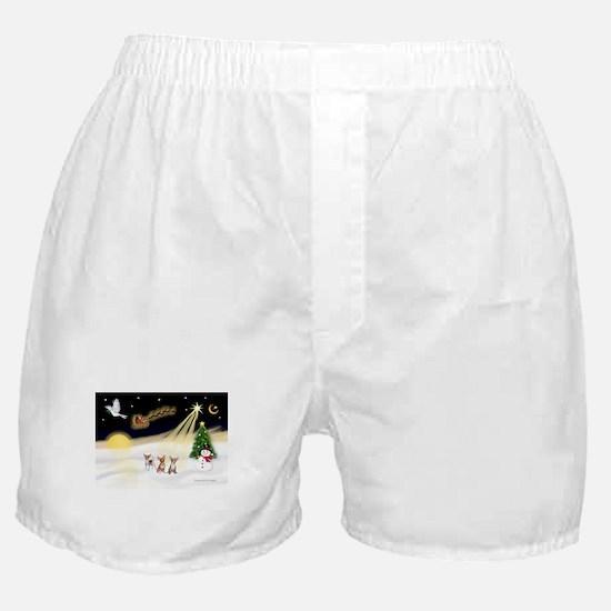 Night Flight/3 Chihuahuas Boxer Shorts