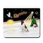 Night Flight/Eng Springer L3 Mousepad