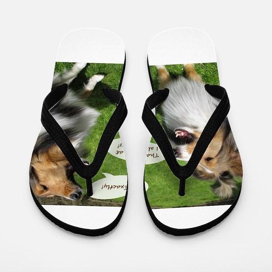 Sheltie Talk Flip Flops