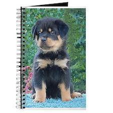 Sitting Rottweiler Puppy Journal