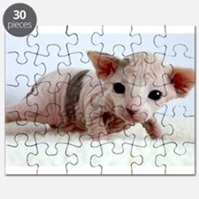sphynx kitten Puzzle