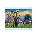St Francis/Aussie (#5) Throw Blanket
