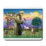 St Francis/Aussie (#5) Mousepad