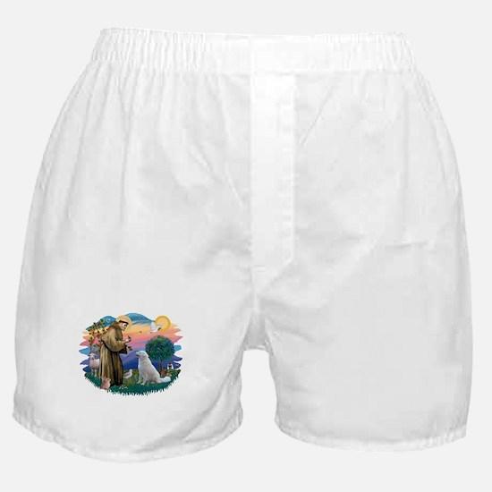 St Francis #2/ Kuvacz Boxer Shorts