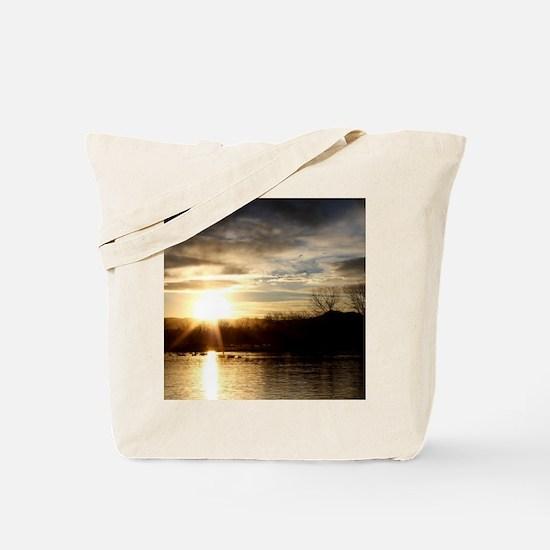 SETTING SUN AT LAKE Tote Bag