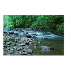 ROCKY STREAM Postcards (Package of 8)
