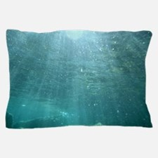 CRATER LAKE NATIONAL PARK Pillow Case