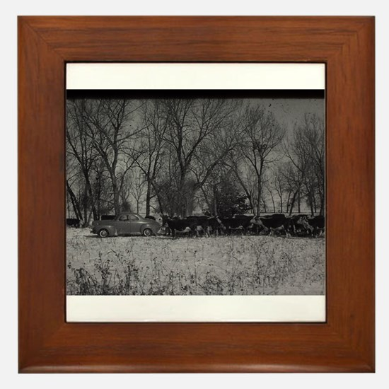 old farm scene with cows and truck Framed Tile