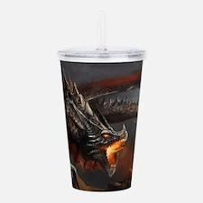 Dragon and Knight Acrylic Double-wall Tumbler