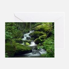 Summer Forest Brook Greeting Card