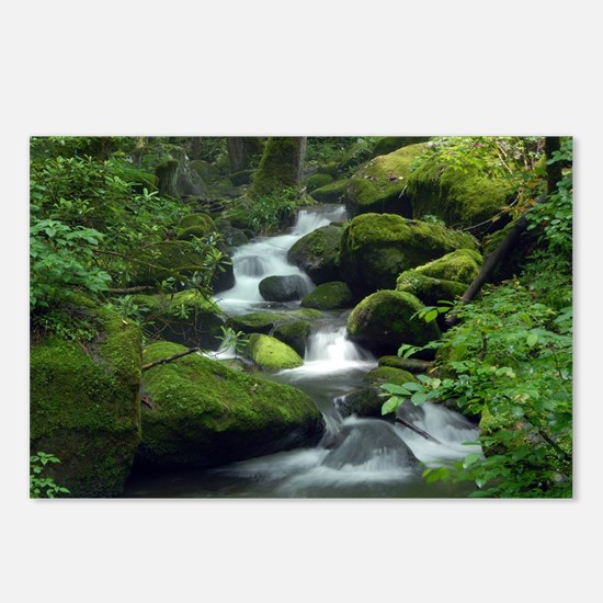 Summer Forest Brook Postcards (Package of 8)