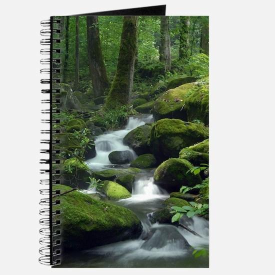 Summer Forest Brook Journal