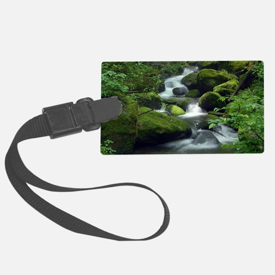 Summer Forest Brook Luggage Tag