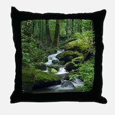 Summer Forest Brook Throw Pillow