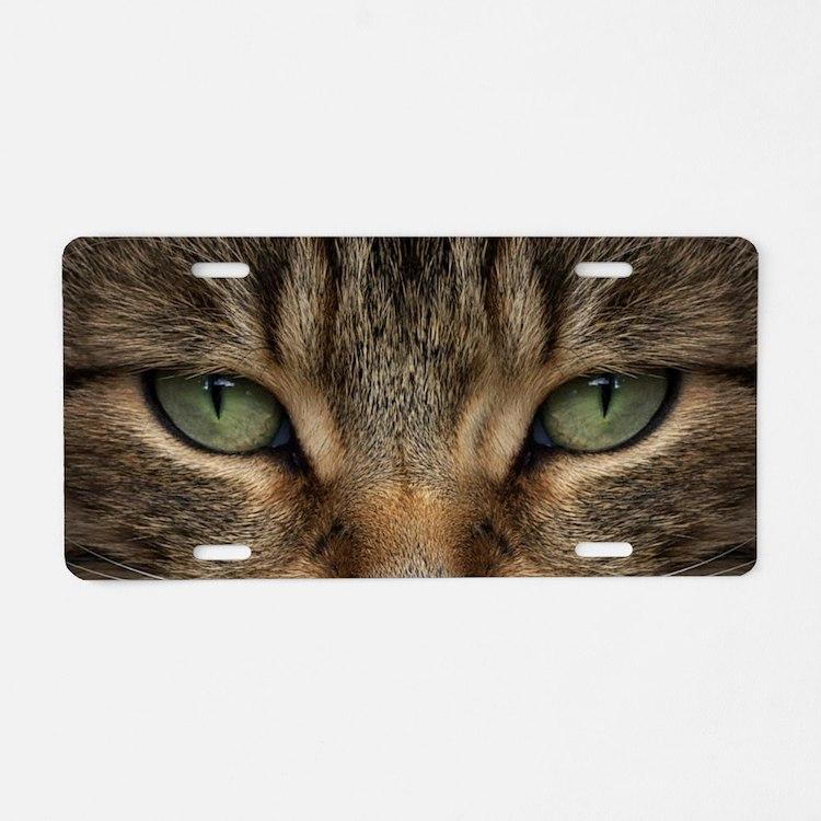 Tabby Cat Face Aluminum License Plate