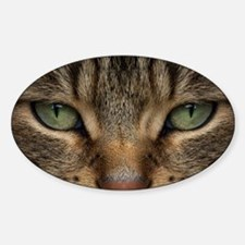 Tabby Cat Face Sticker (Oval)
