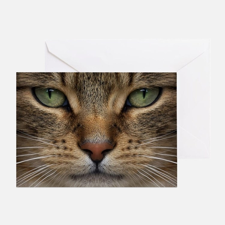 Tabby Cat Face Greeting Card