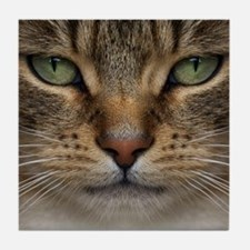 Tabby Cat Face Tile Coaster