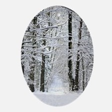 Winter Forest Path Oval Ornament