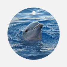 Dolphin20151021 Round Ornament