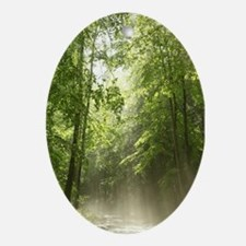 Spring Forest Mist Oval Ornament