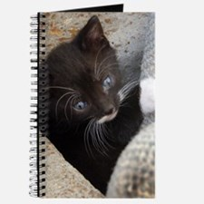 PRETTY BLUE-EYED KITTY Journal