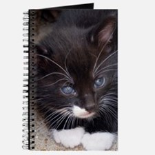 KITTY IN A CORNER Journal