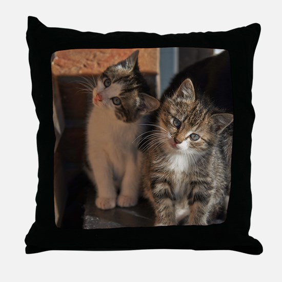 CUTE KITTIES Throw Pillow