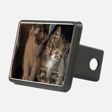 CUTE KITTIES Hitch Cover