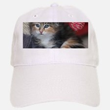 COMFY KITTY Baseball Baseball Cap