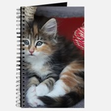 COMFY KITTY Journal