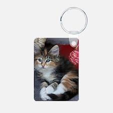 COMFY KITTY Keychains