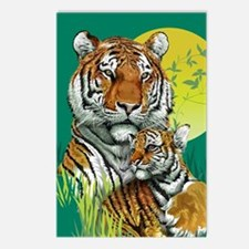 Tiger and Cub Postcards (Package of 8)