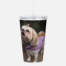 Koko the lhasa apso Acrylic Double-wall Tumbler