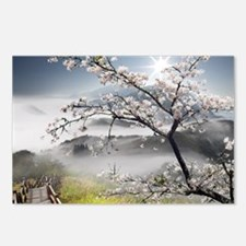 Japanese Cherry Landscape Postcards (Package of 8)