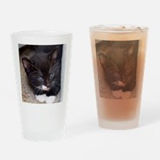 KITTY IN A CORNER Drinking Glass