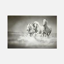 Wild White Horses Rectangle Magnet