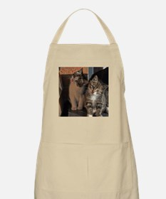 CUTE KITTIES Apron