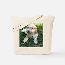 CUTE CAVAPOO PUPPY Tote Bag