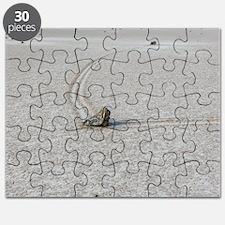 SAILING STONES Puzzle