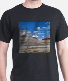 PETRIFIED FORREST TEPEES T-Shirt