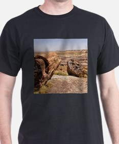 PETRIFIED DESERT T-Shirt
