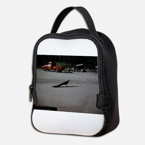 PICT0053.JPG Neoprene Lunch Bag