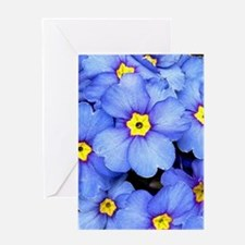 Blue Wildflowers Greeting Cards